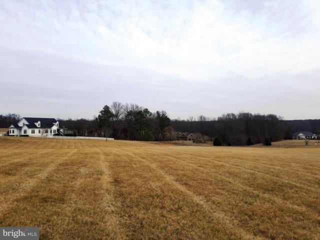 6704 Sunrise Bay Drive, MINERAL, VA 23117 (#1000152638) :: Great Falls Great Homes