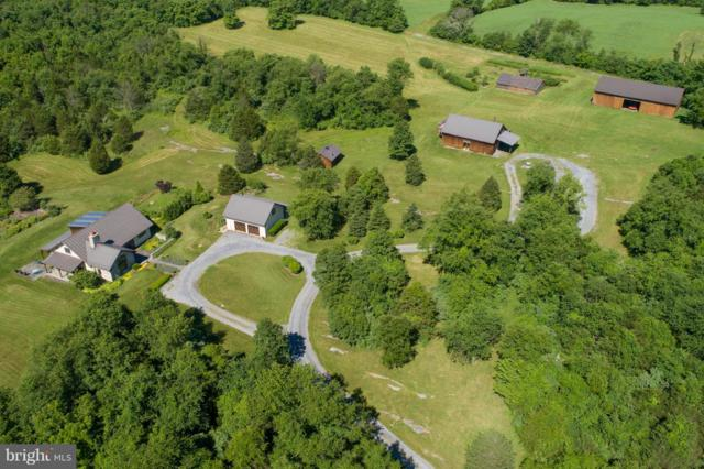 912 White Post Road, WHITE POST, VA 22663 (#1000163044) :: Great Falls Great Homes
