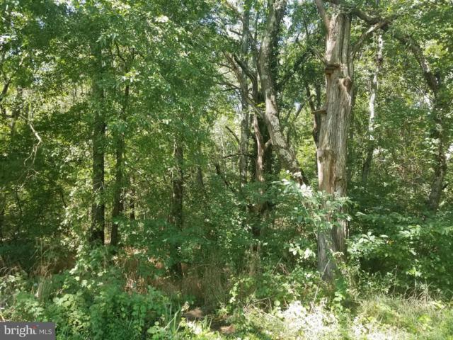 Red Hill Road, ORANGE, VA 22960 (#1000165398) :: Colgan Real Estate