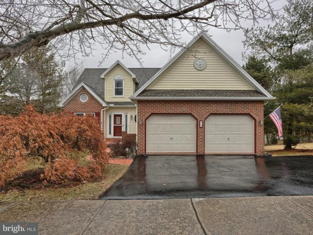 20 Sweet Arrow Drive, HUMMELSTOWN, PA 17036 (#1000167356) :: Teampete Realty Services, Inc