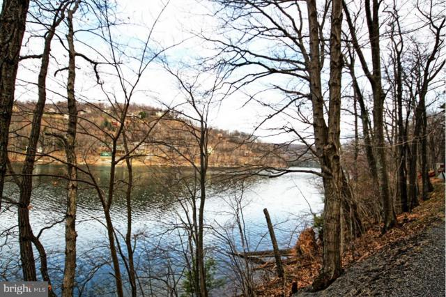 State Park Road, SWANTON, MD 21561 (#1000167552) :: Circadian Realty Group