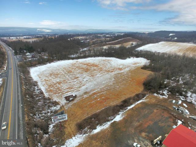 Lot 3 & 3A Holly Pike, CARLISLE, PA 17015 (#1000174796) :: Teampete Realty Services, Inc