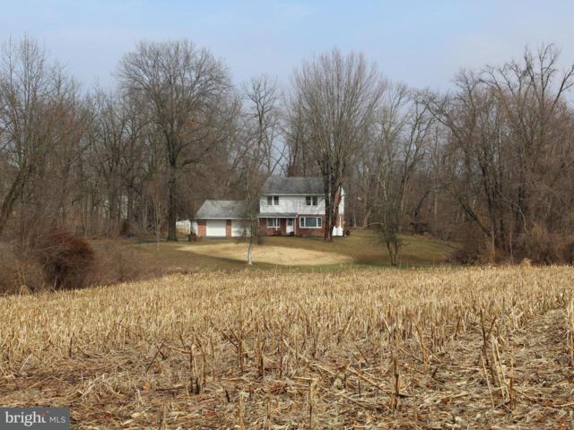 10434 Jonestown Road, ANNVILLE, PA 17003 (#1000175318) :: The Joy Daniels Real Estate Group