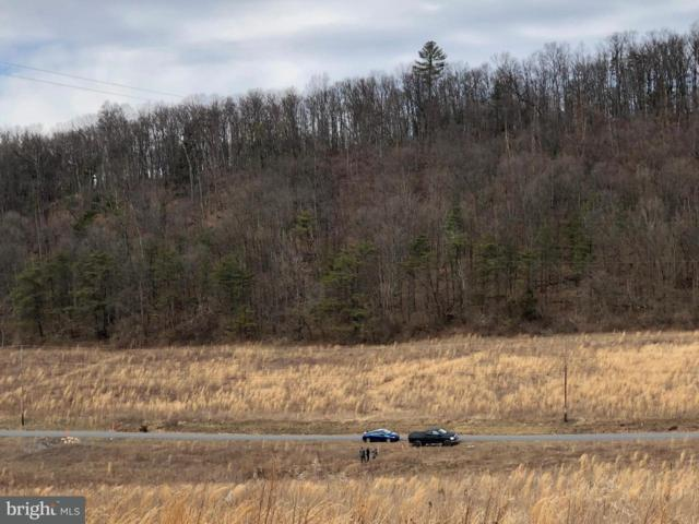 Lot 7 Roth Road, NEW BLOOMFIELD, PA 17068 (#1000200492) :: The Heather Neidlinger Team With Berkshire Hathaway HomeServices Homesale Realty