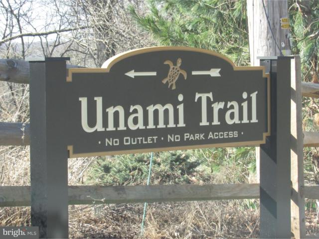 208 Unami Trail, NEWARK, DE 19711 (#1000220846) :: Brandon Brittingham's Team