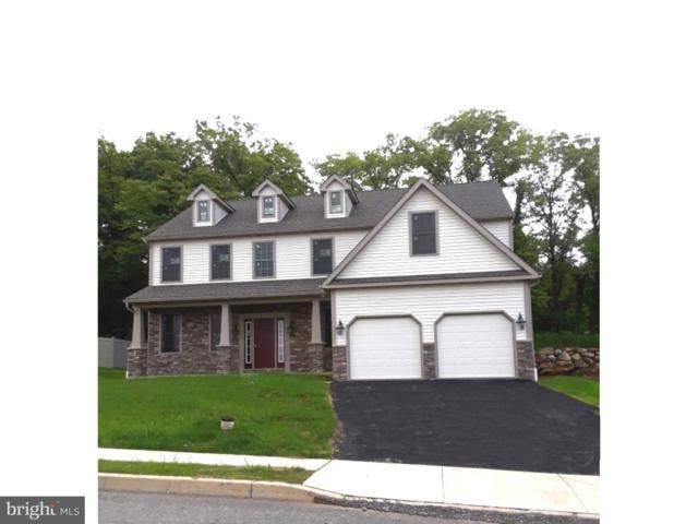 25 Stella Drive, SINKING SPRING, PA 19608 (#1000224492) :: Colgan Real Estate