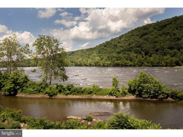 510 Waterview Place, NEW HOPE, PA 18938 (#1000227120) :: McKee Kubasko Group