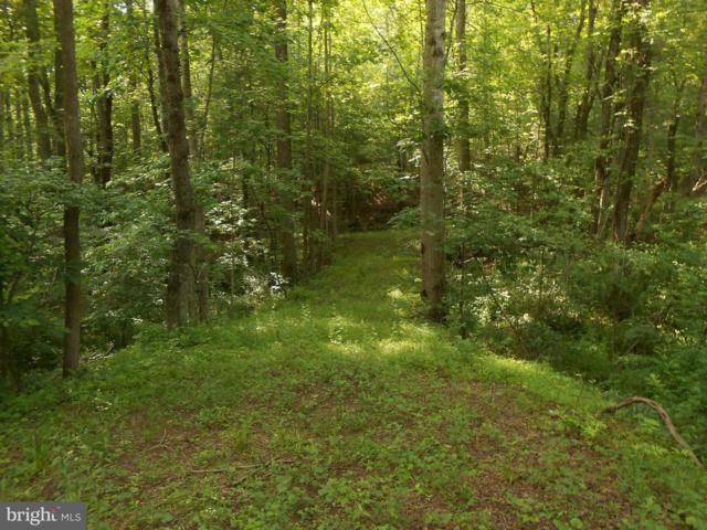 Stonehouse Mountain Road, CULPEPER, VA 22701 (#1000228840) :: Bruce & Tanya and Associates