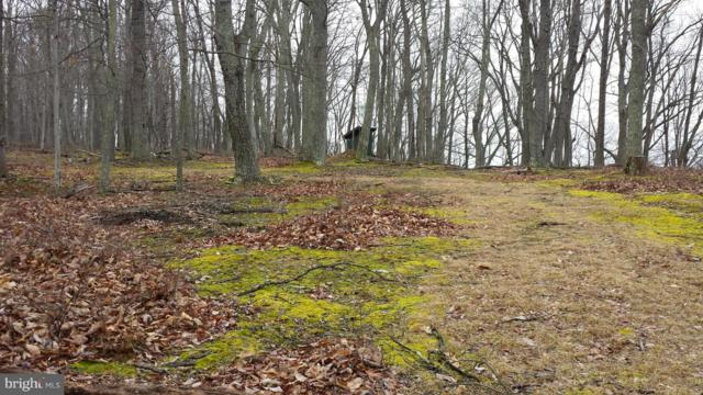 2 Off Route 220 High Knob Road, OLD FIELDS, WV 26845 (#1000236766) :: Eng Garcia Grant & Co.