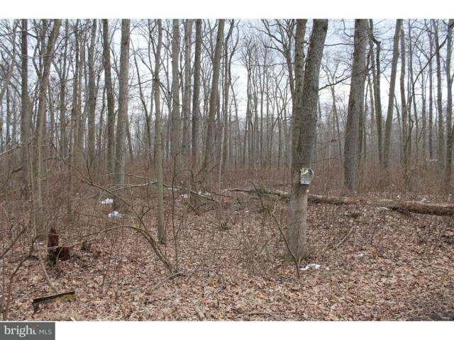 110 Woods Road, EAST WINDSOR, NJ 08520 (#1000238876) :: Remax Preferred | Scott Kompa Group