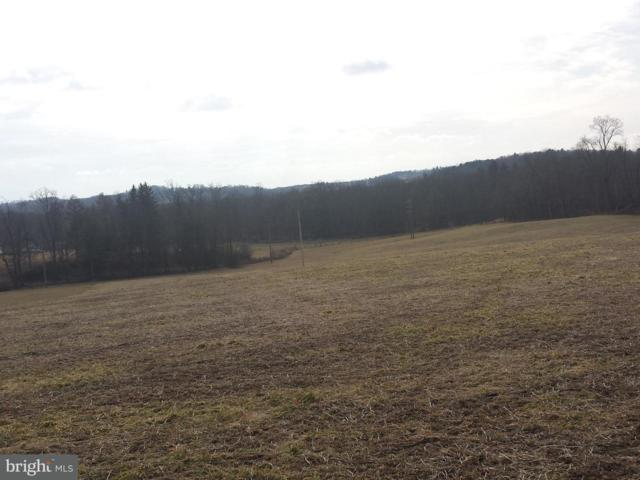 Lot 1 Idaville York Springs Road, GARDNERS, PA 17324 (#1000239816) :: The Heather Neidlinger Team With Berkshire Hathaway HomeServices Homesale Realty