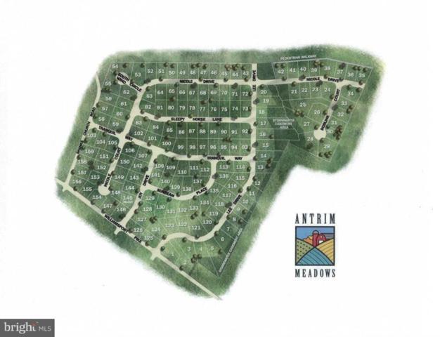 0 Williamsport Pike, GREENCASTLE, PA 17225 (#1000240416) :: The Craig Hartranft Team, Berkshire Hathaway Homesale Realty