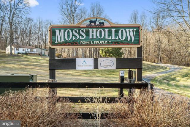 12494 Moss Hollow Road, MARKHAM, VA 22643 (#1000242196) :: Colgan Real Estate