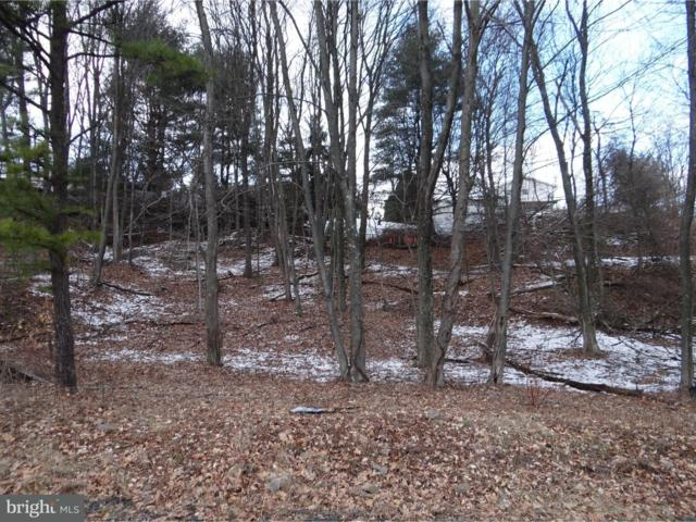 Lot 11 Louisa Avenue, POTTSVILLE, PA 17901 (#1000247760) :: The Heather Neidlinger Team With Berkshire Hathaway HomeServices Homesale Realty