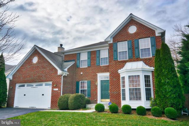 502 Little Kidwell Avenue, CENTREVILLE, MD 21617 (#1000252780) :: Colgan Real Estate