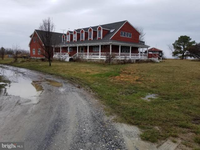 540 Hoopers Neck Road, TAYLORS ISLAND, MD 21669 (#1000255308) :: Atlantic Shores Realty