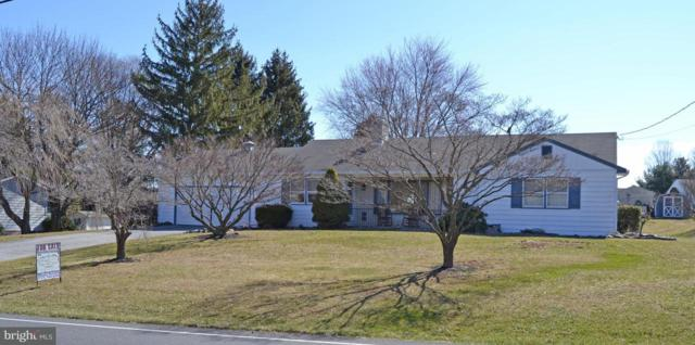 529 Mountain Road, DILLSBURG, PA 17019 (#1000256126) :: The Joy Daniels Real Estate Group