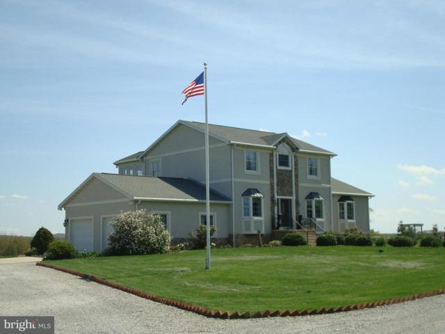 6396 Hoff Road, HEIDELBERG TWP, PA 17362 (#1000257856) :: The Joy Daniels Real Estate Group