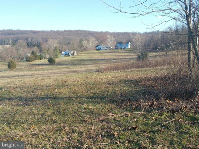 430 S Fileys Road, DILLSBURG, PA 17019 (#1000262478) :: The Joy Daniels Real Estate Group