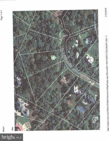 9328 Belle Terre Way, ROCKVILLE, MD 20854 (#1000269142) :: Colgan Real Estate