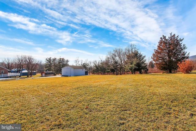 2387 Lambs Gap Road, ENOLA, PA 17025 (#1000271832) :: The Joy Daniels Real Estate Group