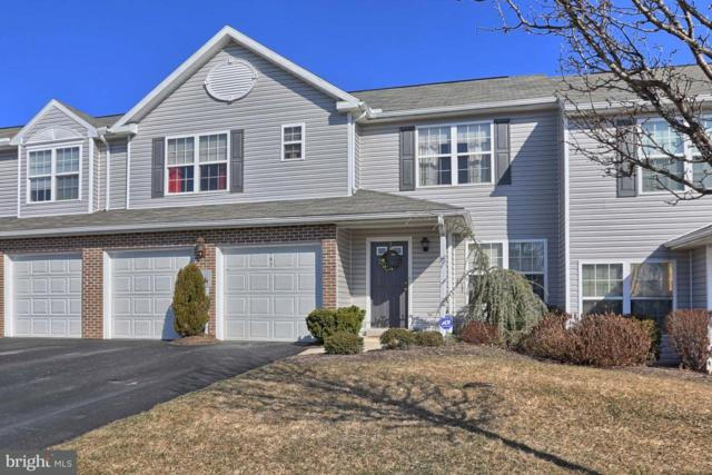 167 Peregrine Lane, HUMMELSTOWN, PA 17036 (#1000275648) :: The Joy Daniels Real Estate Group