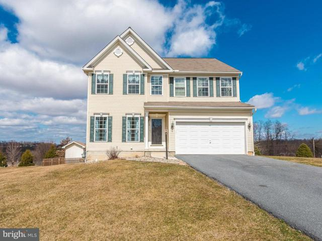14 Wargo Lane, DILLSBURG, PA 17019 (#1000275974) :: The Joy Daniels Real Estate Group