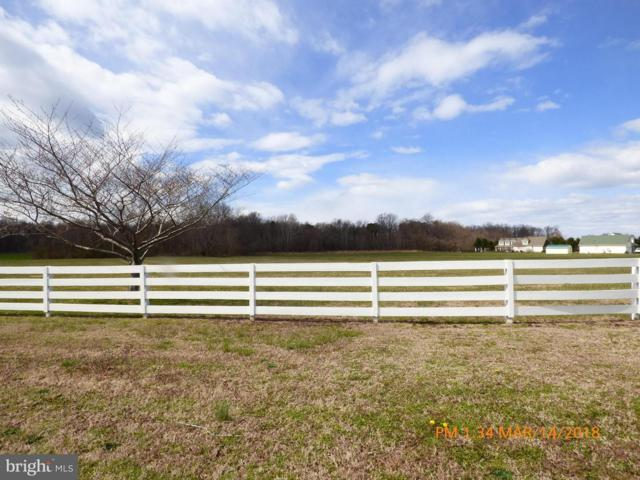 Nomini Bay Farms, MONTROSS, VA 22520 (#1000277594) :: The Gus Anthony Team