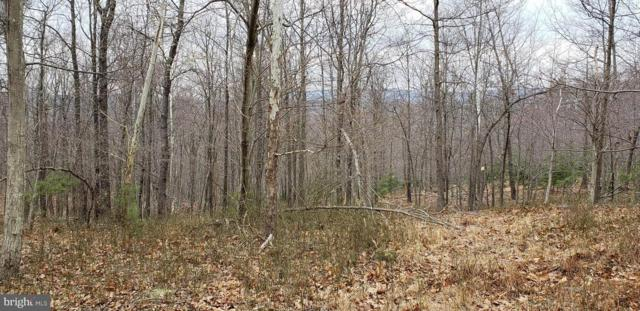 170 Leaning Oak Road, WINCHESTER, VA 22603 (#1000287502) :: The Miller Team