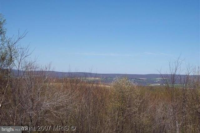 LOT 34 Windswept Lane SW, GRANTSVILLE, MD 21536 (#1000295764) :: The Putnam Group