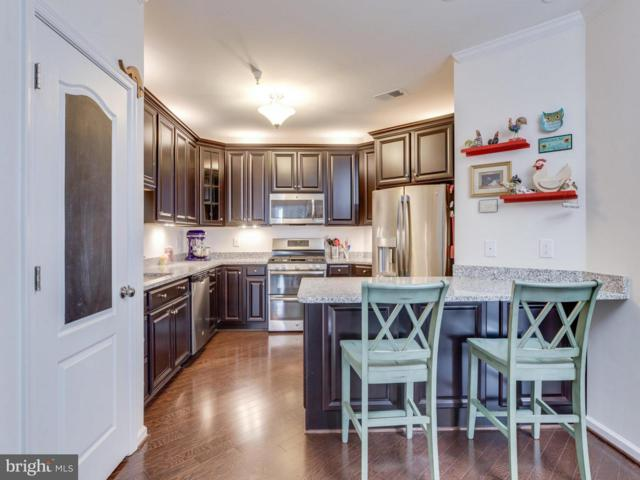 24637 Woolly Mammoth Terrace #206, ALDIE, VA 20105 (#1000297946) :: The Piano Home Group