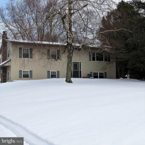 120 Bittle Road, LITTLESTOWN, PA 17340 (#1000299076) :: Benchmark Real Estate Team of KW Keystone Realty