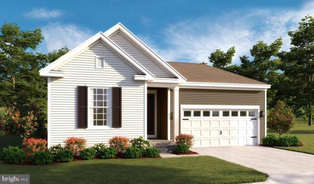 Town Run Lane- Alexandrite, STEPHENS CITY, VA 22655 (#1000300728) :: Colgan Real Estate