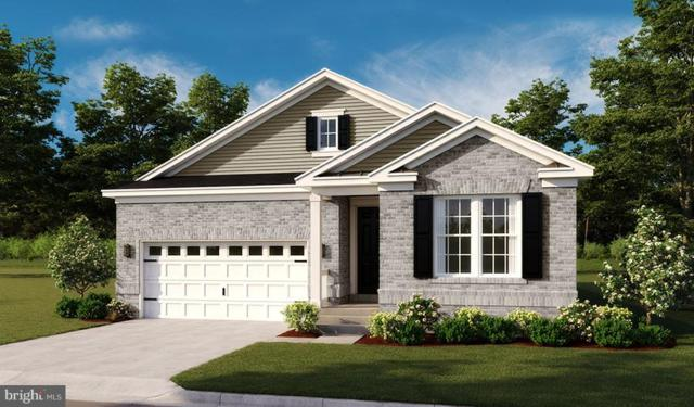 Town Run Lane- Arlington, STEPHENS CITY, VA 22655 (#1000301130) :: Colgan Real Estate