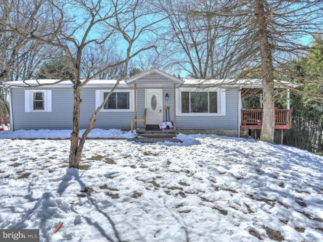 172 Sycamore Trail, DELTA, PA 17314 (#1000304874) :: The Joy Daniels Real Estate Group