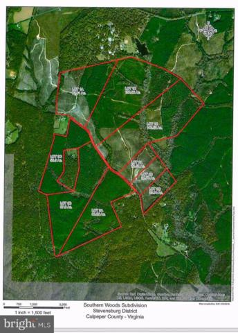 LOT 1A Eleys Ford Road, RICHARDSVILLE, VA 22736 (#1000305968) :: ExecuHome Realty