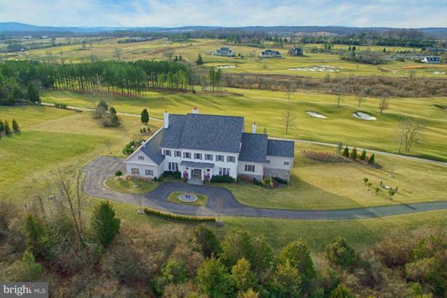 22443 Creighton Farms Drive, LEESBURG, VA 20175 (#1000310530) :: Remax Preferred | Scott Kompa Group
