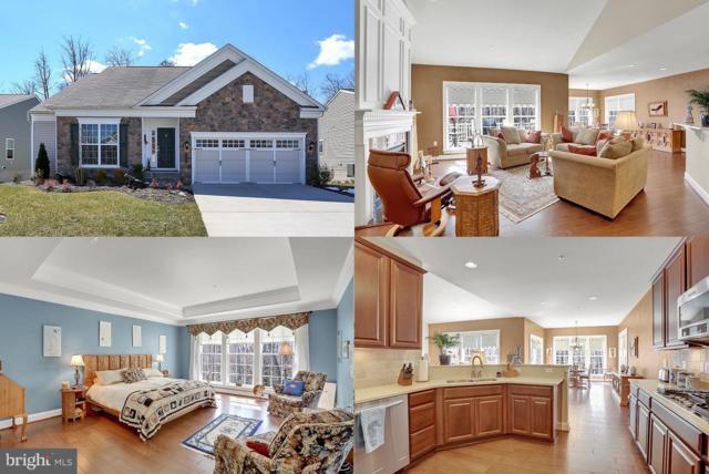 88 Battery Point Drive, FREDERICKSBURG, VA 22406 (#1000315600) :: Colgan Real Estate