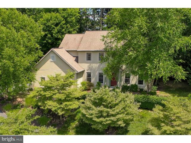 807 Sycamore Road, MOHNTON, PA 19540 (#1000317024) :: Colgan Real Estate