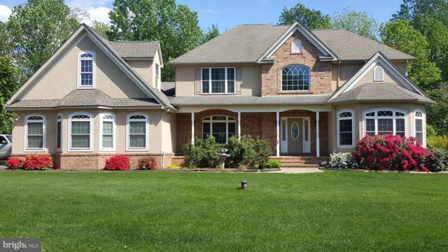 163 Riverside Drive, ELKTON, MD 21921 (#1000319770) :: ExecuHome Realty