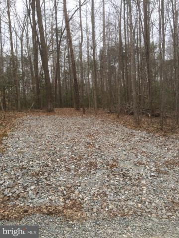 Cooke Place, MINERAL, VA 23117 (#1000337146) :: Green Tree Realty