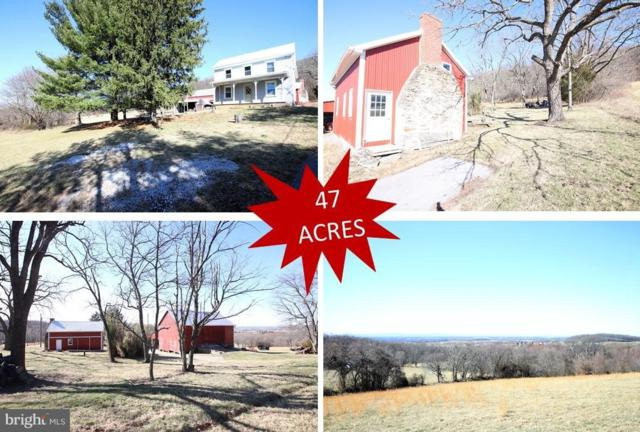 5321 Amos Reeder Road, BOONSBORO, MD 21713 (#1000362682) :: Remax Preferred | Scott Kompa Group