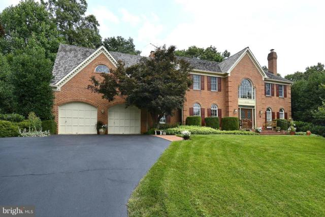 18113 Hayloft Drive, ROCKVILLE, MD 20855 (#1000364186) :: Colgan Real Estate