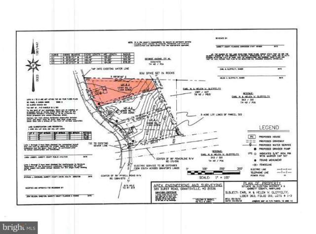 LOT 3 Pysell Road, MC HENRY, MD 21541 (#1000365038) :: The Mike Coleman Team