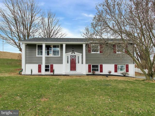 2110 Newville Road, CARLISLE, PA 17015 (#1000365740) :: The Joy Daniels Real Estate Group