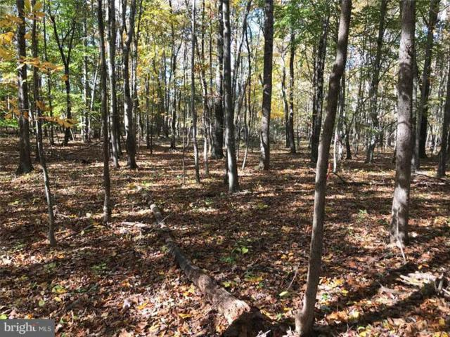 LOT 1 Conde Road, MARSHALL, VA 20115 (#1000377236) :: ExecuHome Realty