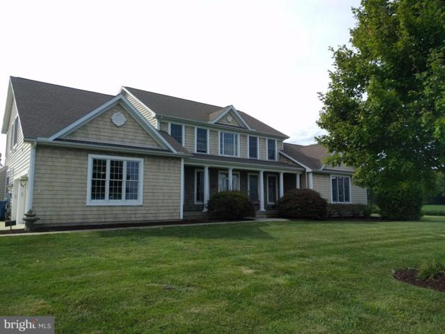 126 Tanyard Road, CENTREVILLE, MD 21617 (#1000387484) :: Great Falls Great Homes