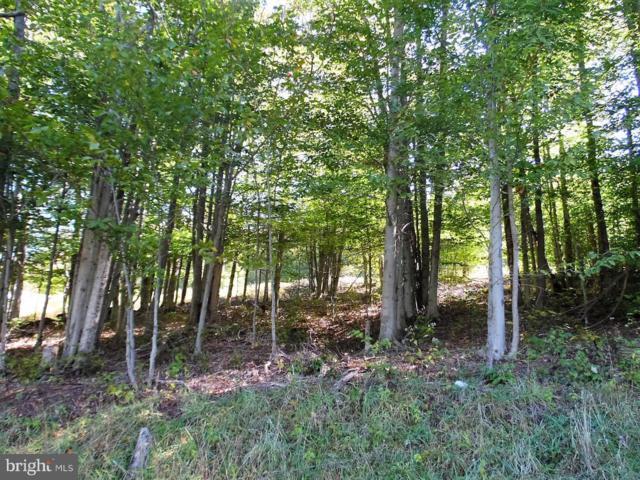 65 Iron Wood Lane, DAVIS, WV 26260 (#1000394474) :: Eng Garcia Grant & Co.