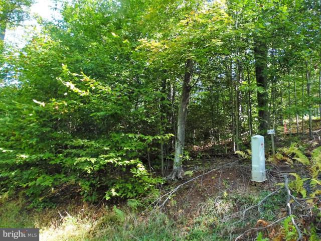 67 Iron Wood Lane, DAVIS, WV 26260 (#1000394620) :: Eng Garcia Grant & Co.