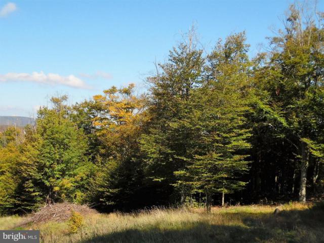 63 Iron Wood Lane, DAVIS, WV 26260 (#1000394704) :: Eng Garcia Grant & Co.